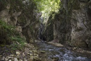fiume fiastrone e le sue gole