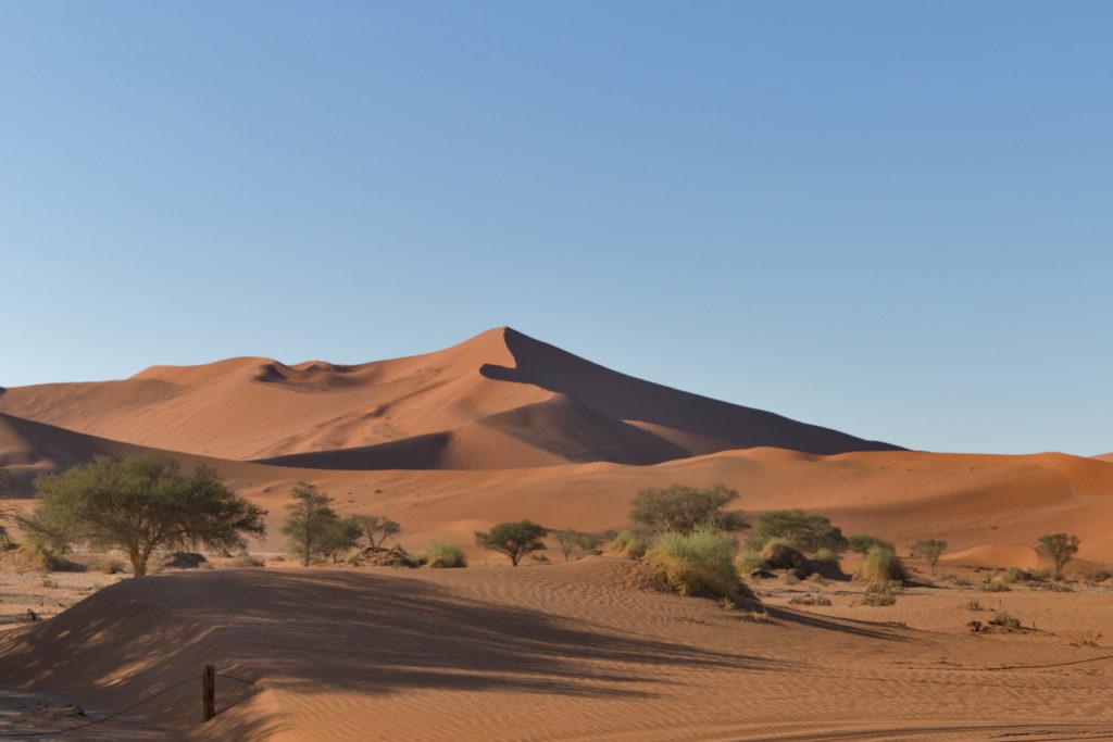 Dune del deserto del Namib