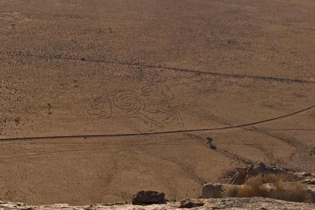cavallo selvaggio disegnato nella sabbia