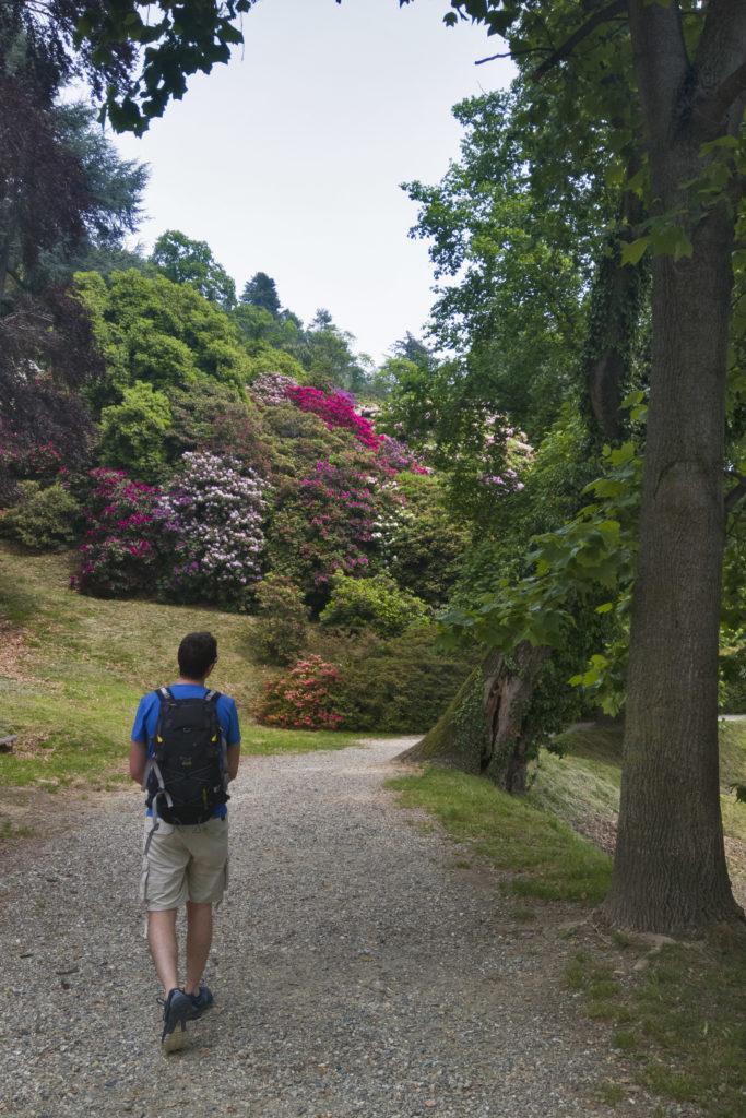 Sentiero parco della Burcina