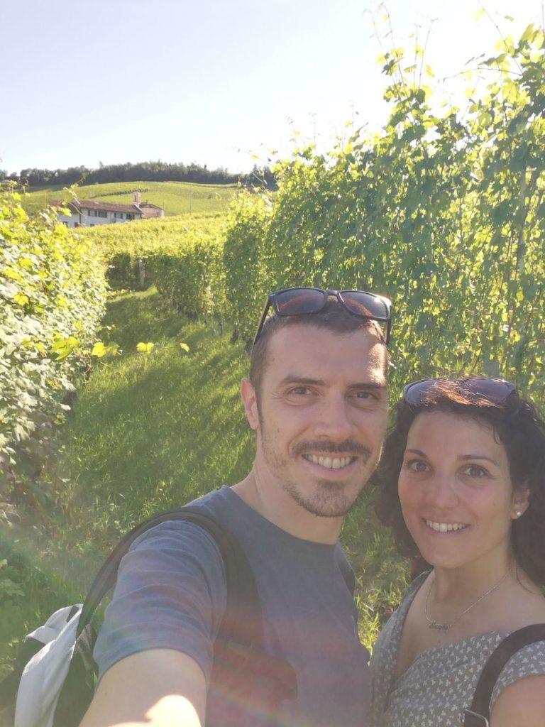 nelle vigne