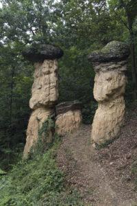 funghi di pietra giganti