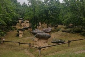 funghi di pietra