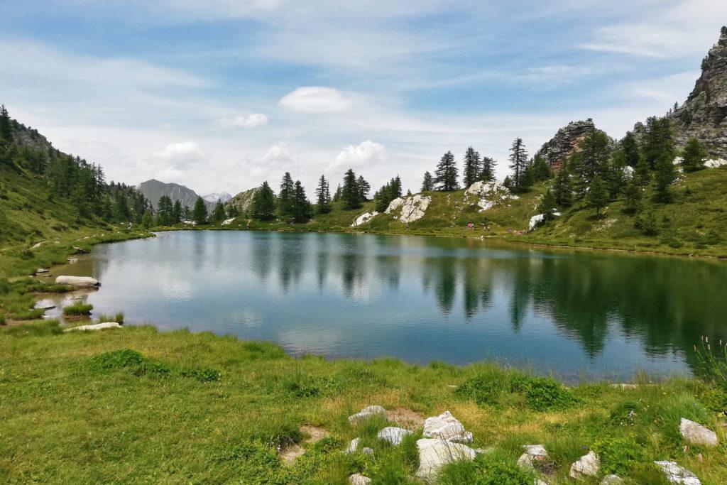 lago alpino con lariceto