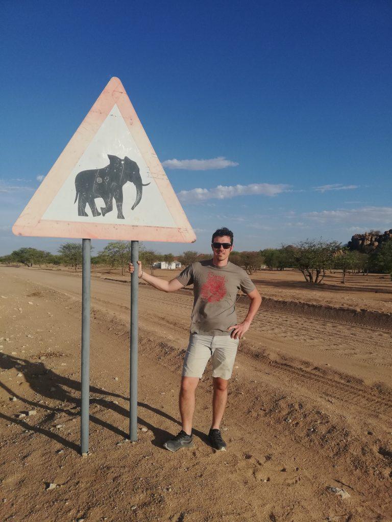 attraversamento elefanti